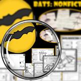 Bats:NonFiction Unit & Foldables & Stellaluna Foldables