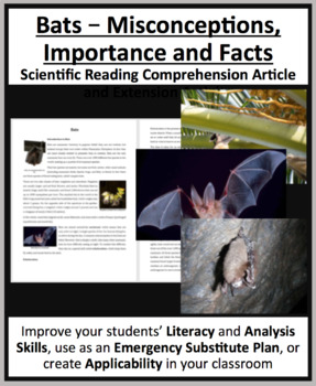 Bats – Misconceptions, Importance, and Facts - Reading Article - Grade 8 and Up
