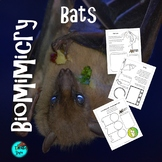 Bats | NGSS STEAM Biomimicry Project Based Learning Digita