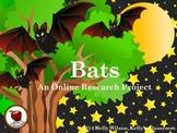 Bats Research Project