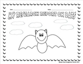 Bats, Owls, Spiders Research Packet