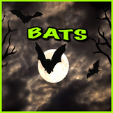 Bats - PowerPoint & Activities