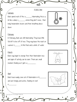 Bats   -  PowerPoint and Worksheets