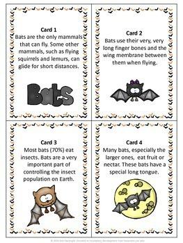 Bats Scavenger Hunt