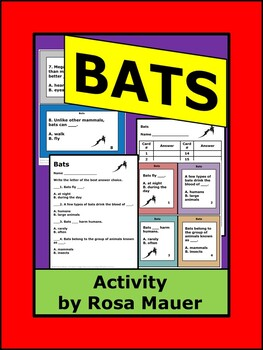 Bats Know It All