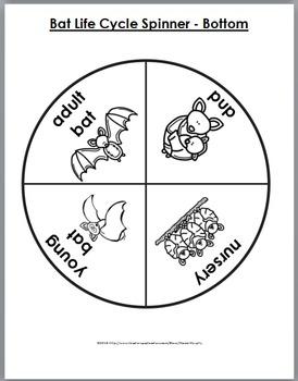 Bats Science, Literacy & Geography - Bats Life Cycle - Bats Unit - Fall Activity