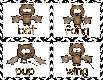 Bats & Spiders Unit - Common Core Aligned