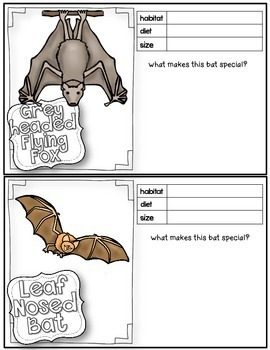Bats Student Writing and Research Booklet, Trading Cards