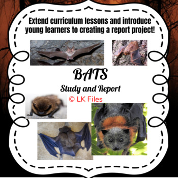 Bats - A Study and Report Project
