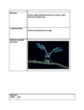 Bats Thematic Unit