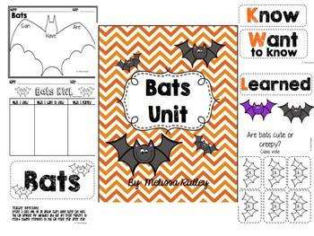 Bats Unit (Stellaluna)