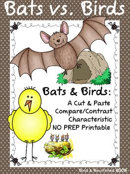 Bats Vs. Birds