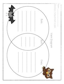 Bats Vs. Owls Venn Diagram