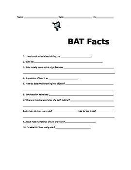 Bats Worksheet