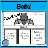 Bats Can Have Are -  Bats Kindergarten, First Grade, and Second Grade