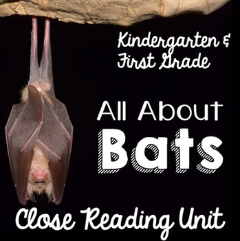 Bats an Informational Text Unit for Kindergarten & First G