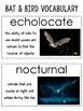 Bats and Birds Unit
