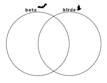 Bats and Birds Venn Diagram
