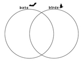 Bats and Birds Venn Diagram