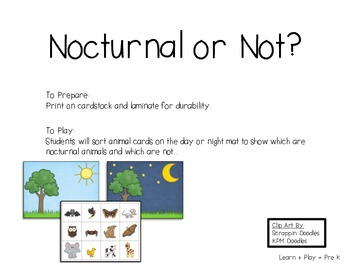 Bats and Other Nocturnal Animals