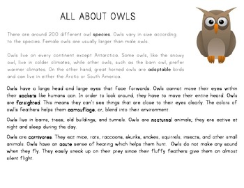 Bats and Owls For Comparing and Contrasting