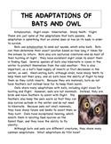 Bats and Owls Non-fiction Articles