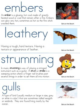Bats and the Beach Vocabulary