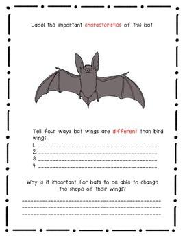 Bats by Gail Gibbons- A Nonfiction Book Response Journal