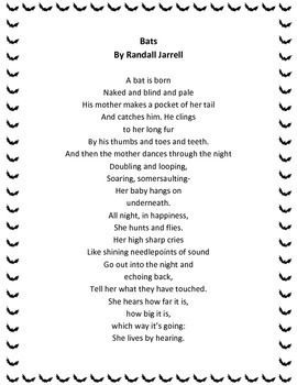 Bats by Randall Jarrell Poetry Analysis
