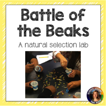 Battle of the Beaks- a natural selection activity
