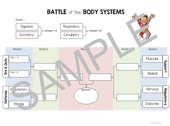 Battle of the Body Systems