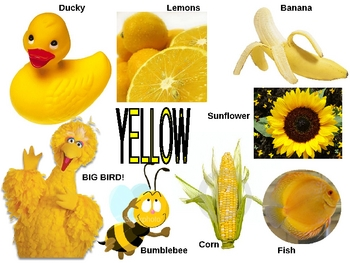 Bb, Yellow, 2