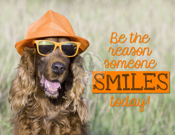 Be The Reason Someone Smiles Today - Motivational Poster with Funny Dog