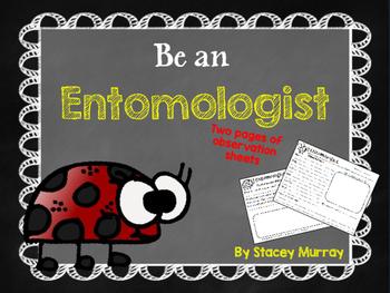 Be an Entomologist Observation Sheets