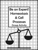 Be an Expert! Homeostasis & Cell Processes