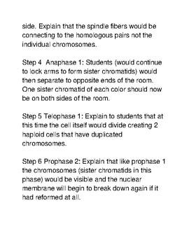 Be the Chromosome Meiosis Simulation
