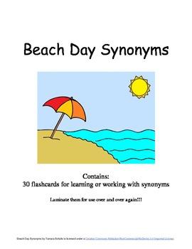 Beach Day Synonyms