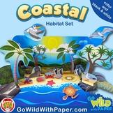 Beach Diorama Project |  Coastal Animal Habitat Craft Activity