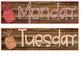 Beach Pineapple Weathered Wood Calendar Set