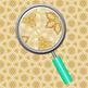 Beach Sand / Shells Kalidoscope Backgrounds / Digital Paper Clip Art