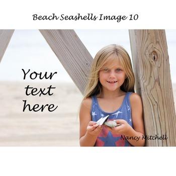 Beach Seashells Image 10