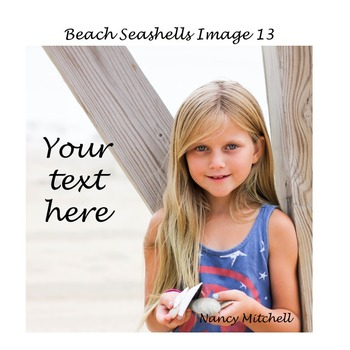 Beach Seashells Image 13