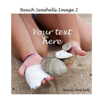 Beach Seashells Image 2