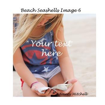 Beach Seashells Image 6