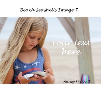 Beach Seashells Image 7