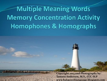 Beach Themed Multiple Meanings Memory Activity
