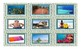 Beach Things and Activities Spanish Legal Size Photo Card Game