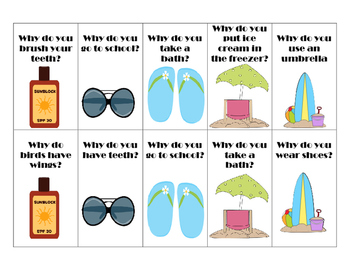Beach Trip Must Haves! A Wh-question Language Activity