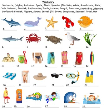 Beach Vocabulary