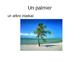 Beach Vocabulary in French (la plage)